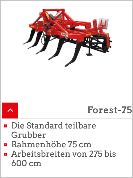 Forest 75